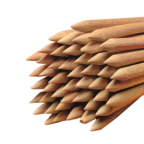 Hopser Food Fun Holz-Rundstäbe gespitzt Ø 6 mm Länge 150 mm für Äpfel oder Waffeln Buchenholz (50)