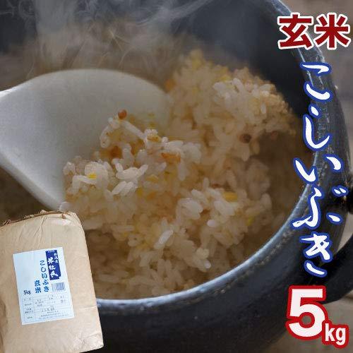 【玄米】こしいぶき 5kg 新潟県産「米杜氏」環境保全型栽培米