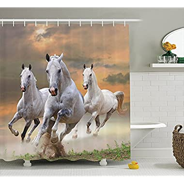 Animal Decor Shower Curtain Set By Ambesonne, Stallion Horses Running On A Mystical Sky Background Equestrian Male Champions Print, Bathroom Accessories, 69W X 70L Inches, White Orange