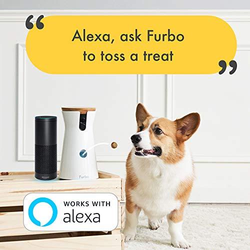 Furbo Hundekamera: Full-HD-Wifi-Haustierkamera mit 2-Wege-Audio, Leckerli-Ausgabe und Bell-Alarm (bekannt aus VOX hundkatzemaus) - 6