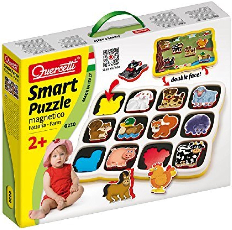 Con 100% de calidad y servicio de% 100. Smart puzzle magnetico by by by Quercetti  marcas de diseñadores baratos