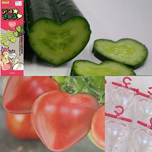デコきゅう:ハート1本とハートのトマトミニ5個入りのセット[家庭菜園用]