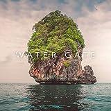 Water Gate (Original Mix)