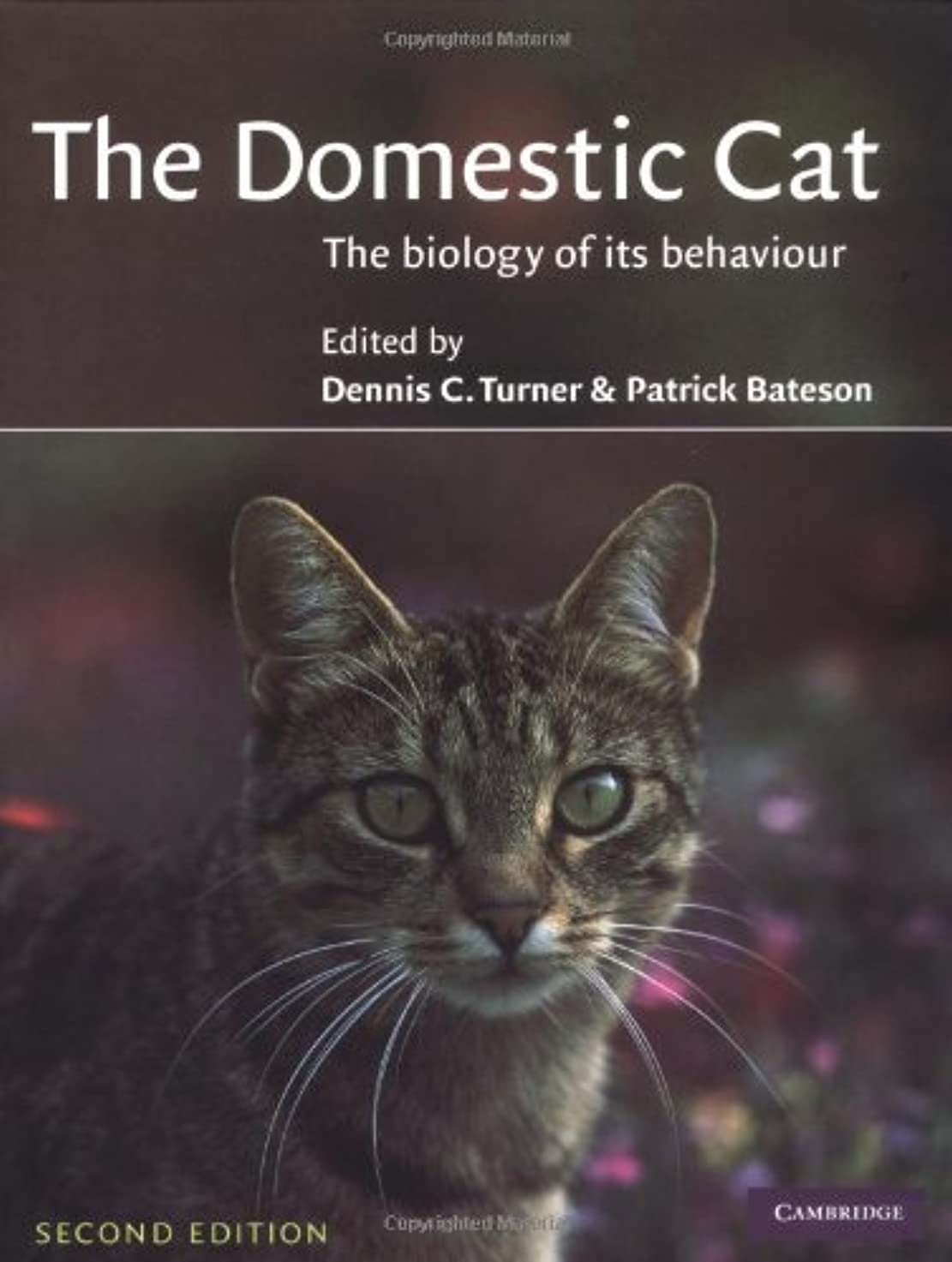 不機嫌そうな料理をする結婚The Domestic Cat: The Biology of its Behaviour