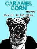 Caramel Corn the Pug. Kick Em' In the Kibble