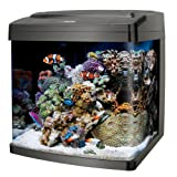 Coralife Biocube, Size 29