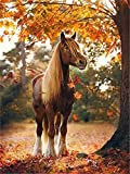 DIY 5D Diamond Painting Set Animal Horse,Adults Full Drill Crystal Rhinestone Embroidery Cross Stitch by Number Kits Mosaic Canvas Arts Craft for Home Wall Decor Gift 90x120cm(35.4x47.2in) D27539