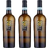 Falanghina Feudi di San Gregorio | Confezione da 3 Bottiglie da 75 Cl | Vino Bianco | I Vi...
