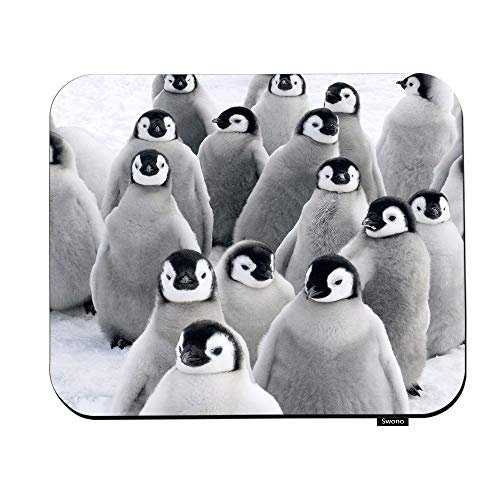Swono Penguins Mouse Pads Cute Lovely Funny Antarctic Penguins Mouse Pad for Laptop Funny Non-Slip Gaming Mouse Pad for Office Home Travel Mouse Mat 7.9'X9.5'