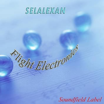 Flight Electronics