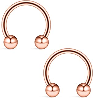 Ruifan 16G 14G Rose Gold CBR Horseshoe Circular Rings 316L Surgical Steel for Lip Eyebrow Tongue Nipple Helix Tragus Cartilage Septum Piercing Jewelry 2-4PCS