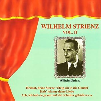 Wilhelm Strienz Vol. II