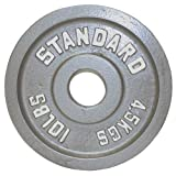 USA Sports Troy Barbell Gray Olympic Weight Plate (10-Pound)