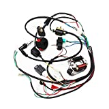 Full Electrics Wiring Harness CDI Coil Magneto Stator 50cc 70cc 90cc 110cc 125cc...