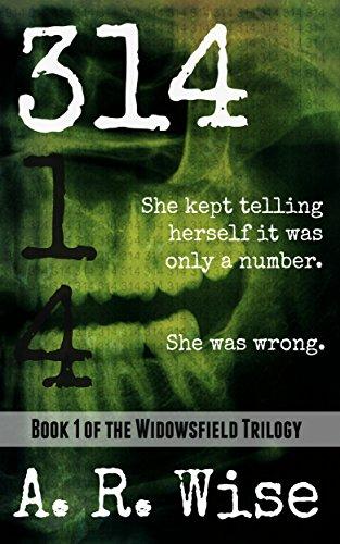 314 (Widowsfield Trilogy Book 1)