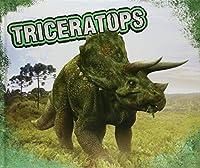 Triceratops (Dinosaurs)