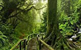 Papel Pintado Pared 3D Fotomurales Verde Árbol Grande Paisaje Selva Tropical Mural Pared Pintado Papel Tapiz Salón Dormitorio Tv Fondo Decoración De Pared 430x300cm