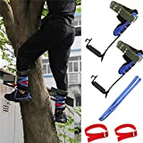 HTTMT- Tree/Pole Climbing Spike Set Safety Belt Strap Rope Adjustable Stainless Steel [P/N: ET-OUTDOOR002-RAW]
