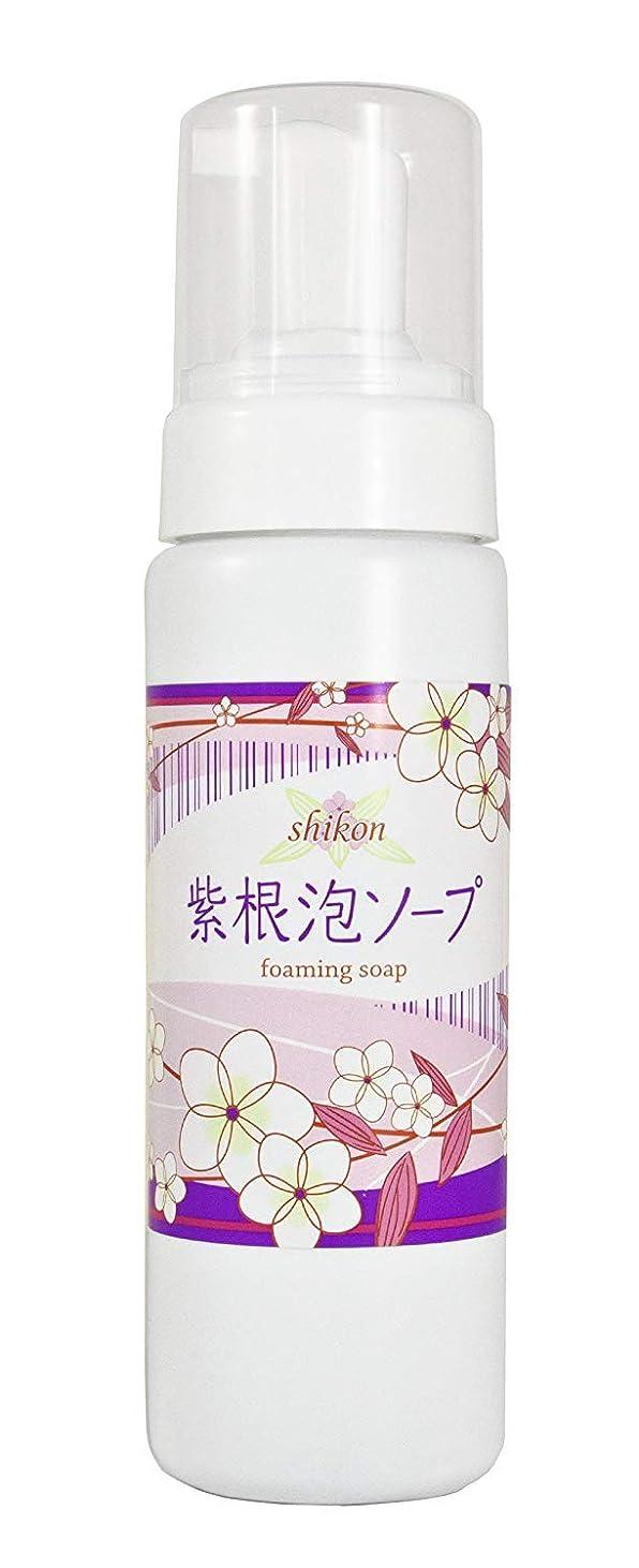 の頭の上表示プール自然化粧品研究所 紫根泡ソープ 210g ポンプフォーマーボトル