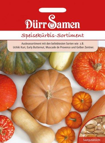 Dürr Samen 0916 Speisekürbis Sortiment (Speisekürbissamen)