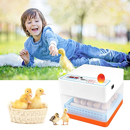 Anbull Incubadora Automática de 24 Huevos, Incubadora Digital con Batería de 12V, Pantalla Digital de Temperatura y Humedad, Temperatura y Humedad Ajustable, para Huevos de Gallina, Huevos de Pato