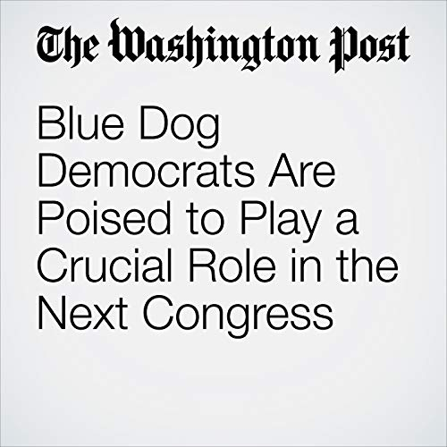 Blue Dog Democrats Are Poised to Play a Crucial Role in the Next Congress audiobook cover art