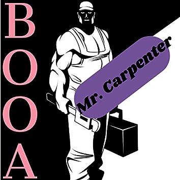 Mr. Carpenter