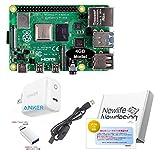 Raspberry Pi 4 Model B (4GB) (BASIC)
