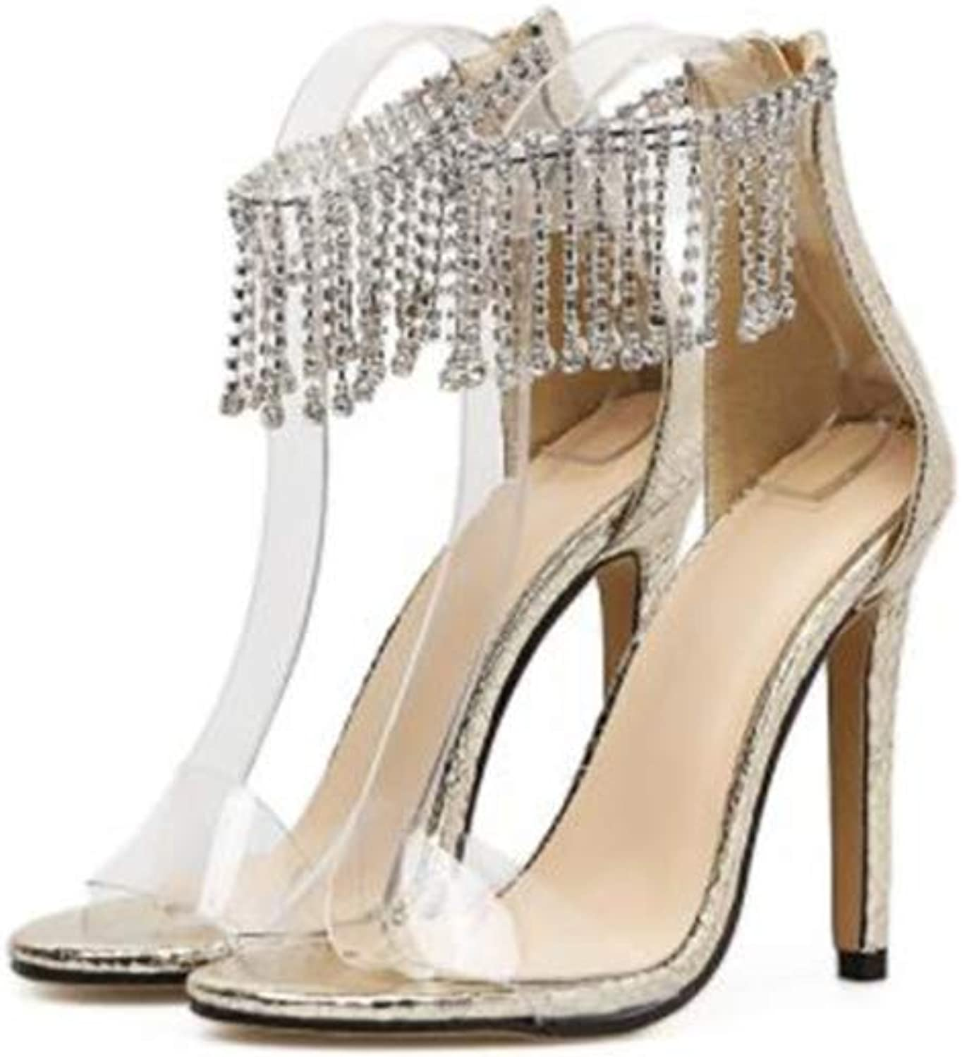 FLourishing Women's Clear Pointed Peep Toe Rhinestone Tassel Stiletto High Heeled sandanl with Back Zip up
