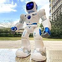 Ruko Large Programmable Interactive RC Robot