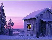 NC88 雪の中で実践的な能力減圧おもちゃの家を改善するための5DDiyダイヤモンドペインティングダイヤモンド12x16インチ(フレームレス)