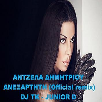 Anexartiti (DJ Tk & Junior D Remix)