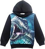 Toddler Boys Sweatshirts Dinosaur Cartoon Hoodies T-Shirts for Boy Autumn Winter Little Kids Clothes Hoodie Jacket Size 5T