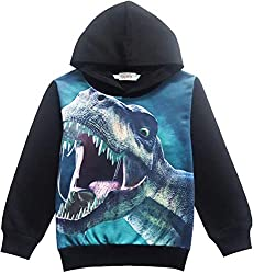 3. CM-Kid Store Boy's Dinosaur Hoodie
