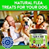 FurroLandia Chewable Flea & Tick Treats for Dogs - Made in USA - 140 Soft Chews - Natural Flea and Tick Supplement for Dogs | No Mess | No Collars - Bacon Flavor #3