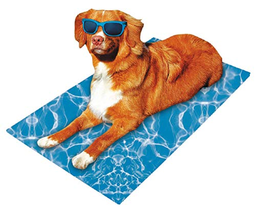PETGARD Kühlmatte für Hunde, kühlende Hundedecke, Kühlkissen mit Wellenmuster 65 x 50 cm