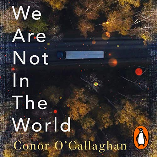 We Are Not in the World cover art