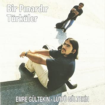 Bir Pınardır Türküler
