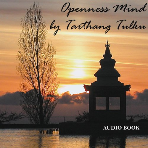 Openness Mind cover art
