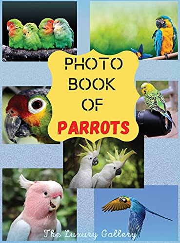 Photo Book of Parrots: The Best Selection of 44 Exotic Parrot Photos from the Best Photographers in Manhattan