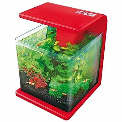 Aquadistri SF Wave 15 Aquarium rot, 18 l
