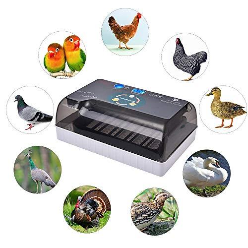 Incubadora Incubadora De Uso General para Aves De Corral Digital con Giro Automático De Huevos Y Protección contra Sobrecalentamiento, Reguladora De Aves para Pollos Patos Goose Pigeon Quailon