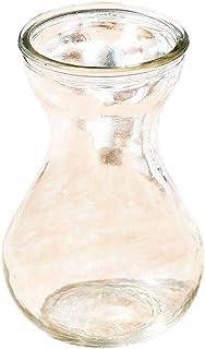 Wean Jarrón de cristal transparente para decoración del hogar, apto para plantas hidropónicas, hidropónicas, acuáticas