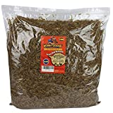 Wormy-Licious! Dried Mealworms in Bulk: Treats for...