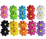 Geek-M 20 Pcs Iron On Patches Flower Applique Patches Mixed Color Decorative Patches