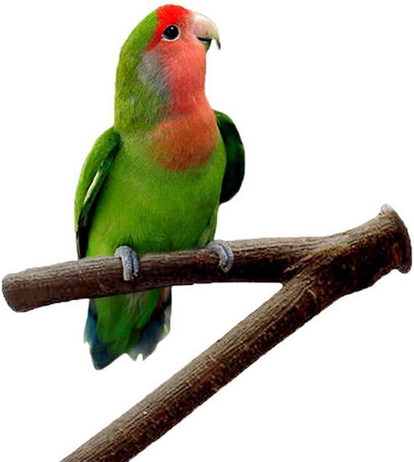 Washington Mall SOBAKEN Tcplyn 1 Pcs Wood Perch Award-winning store Grinding Y Parrot Toy Paw Shape