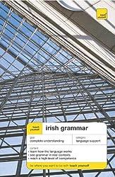 Teach Yourself Irish Grammar (TY: Language Guides): Eamonn O'Donaill