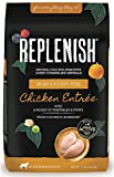 Replenish Pet 304 K9 Dog Food With Active 8, 4Lb