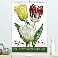 Tulpen - Jahr (Premium, hochwertiger DIN A2 Wandkalender 2022, Kunstdruck in Hochglanz): Die schoensten Tulpenillustrationen vergangener Zeit (Monatskalender, 14 Seiten )