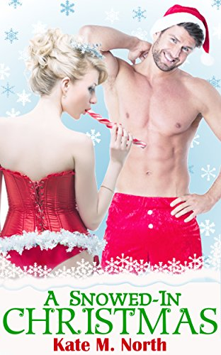 A Snowed-In Christmas: An Erotic Romance Novel